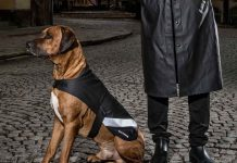 Stutterheim's Dog Raincoat